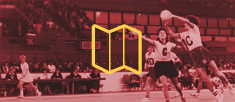 Icon for netball archive
