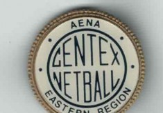 The Story of CENTEX - the East Region Centre of Excellence