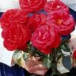 The AENA rose