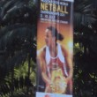 2011 World Netball Championship