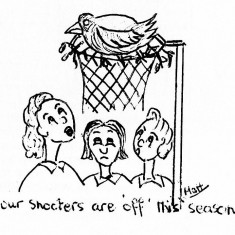 Cartoon showing a bird nesting in a goal net with te caption 'Our shooters are off this season'
