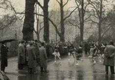 Netball Lincoln's Inn Fields, circa 1950